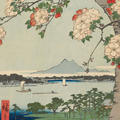Trunk and branches of the blossoming cherry tree in the foreground and view over the Sumidagawa, Edo's most important river.