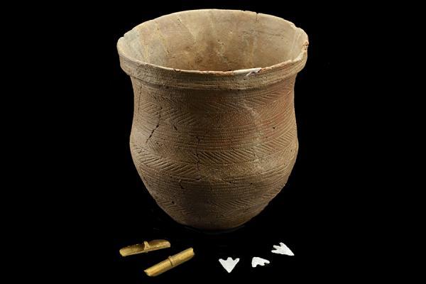 learn beaker ashmolean