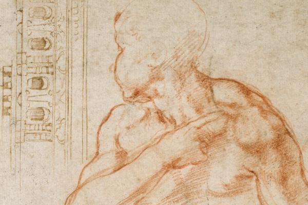 michelangelo studies listing image