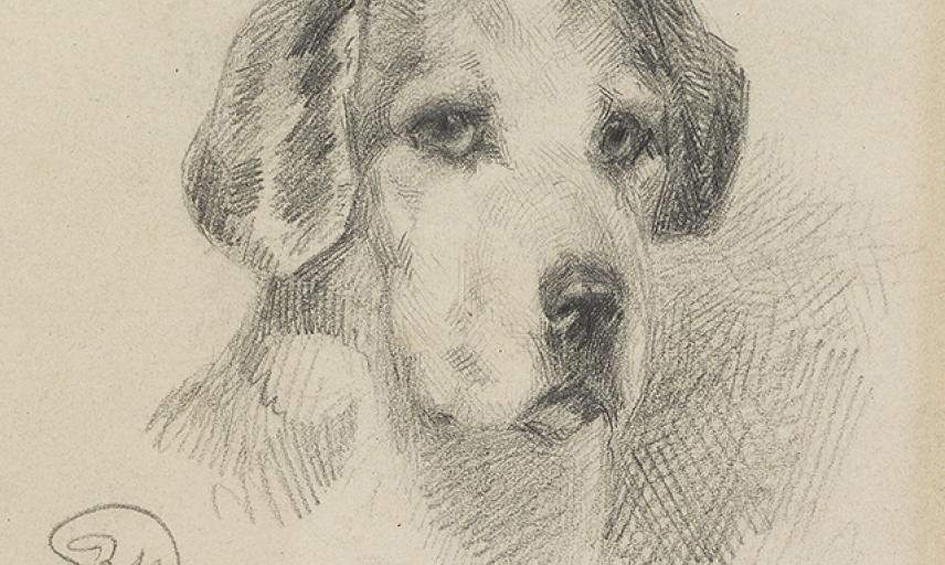 Portrait of a Dog, Uknown wa_2015_50-a