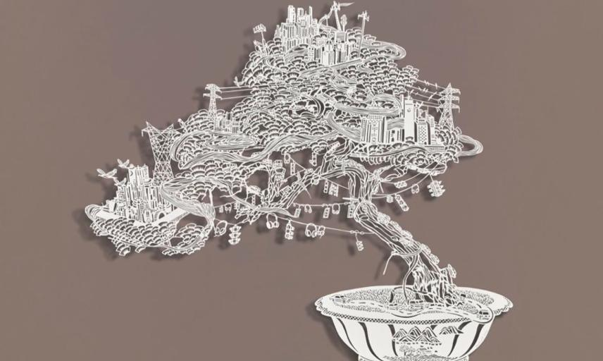 boveylee bonsai wired cities