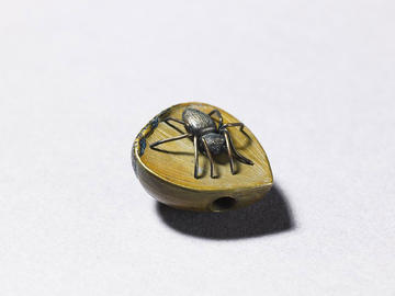 A small wooden bead in the form of a chestnut with a black spider on top
