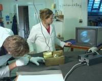 Using an endoscope to look inside a sculpture